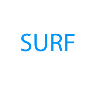 surf text